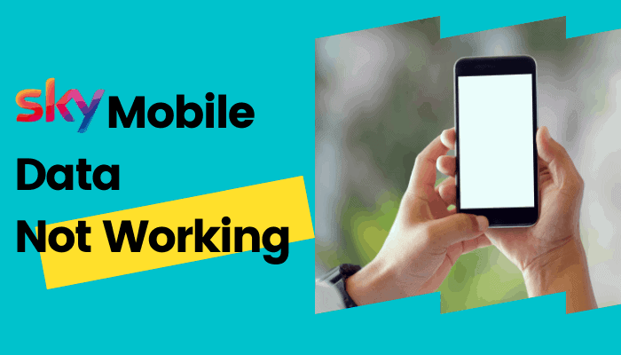 How to Fix Sky Mobile Data Not Working Issue Easily?